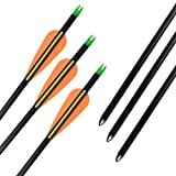 YLS 30 inch Fiberglass Arrows for Compound Bows Archery Youth Arrow Insert Bullet