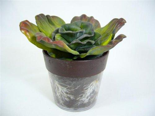 11 CM DECO Plante désertique artificielle