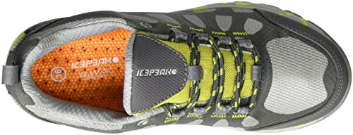Ice Peak Wanja, Chaussures Multisport Outdoor Femme Argent (Silver)