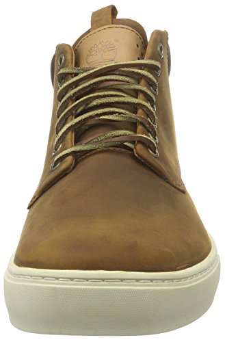 Timberland Adventure 2.0 Cupsole_adventure 2.0 Cupsole Chu, Sneakers basses homme brun (Red Brown Oiled)