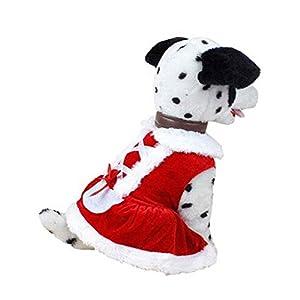 SAMGU Costumes Vêtements pour chien Noël Père chien jupe pour animaux manteau