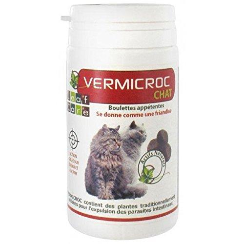 vermifuge-naturel-chat