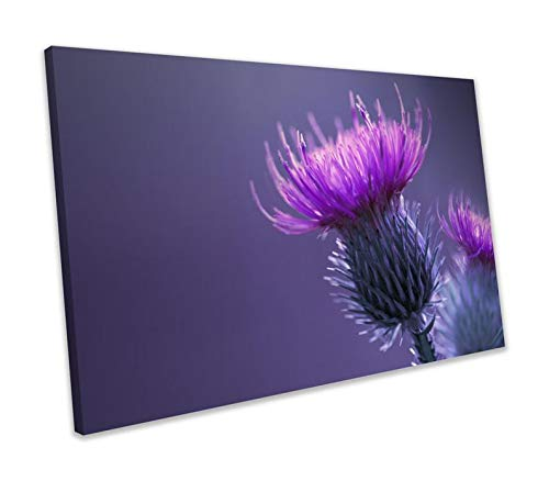 chuanghe3943 Unframe Canvas Printing Pink Thorny Thistle Flower Floral Framed Picture Canvas Print Bedroom Bathroom Decoration Wall Art -