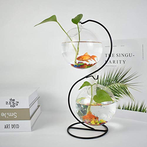 Sommer's Laden Transparenter Glasvasen-Betriebsbonsais-hängender Blumen-Topf