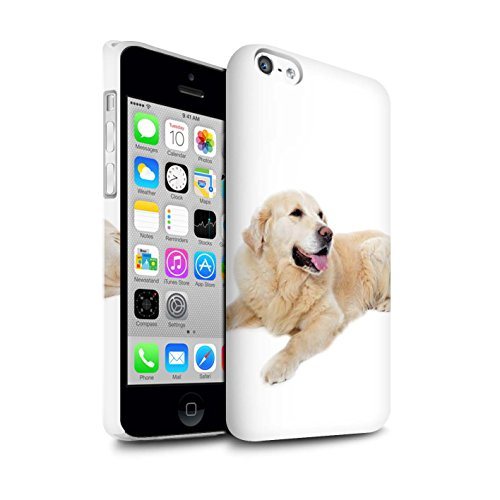 STUFF4 Matte Snap-On Hülle / Case für Apple iPhone 8 / Bull Terrier Muster / Hund/Hunde Kollektion Labrador