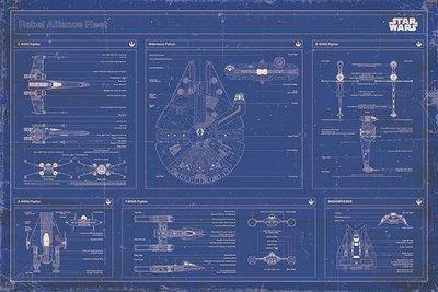 Affiche STAR WARS - REBEL ALLIANCE FLEET BLUEPRINT 61 x 91 cm