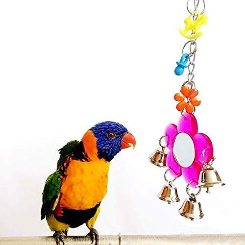 Never Ending - Espejo de pájaros para Loro, Periquito, cacatúas, Cono, pájaro, pájaro Africano, Color Gris, Macaw Amazon Cockatoo