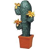 Unique Party Cactus Pinata