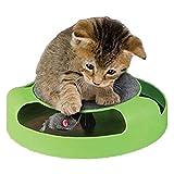 Wuraxy Giocattolo dell'animale Domestico del Giocattolo del Gatto del Gatto di Verde del Bordo di Topo di Scratch del Gatto del Giocattolo del Gatto