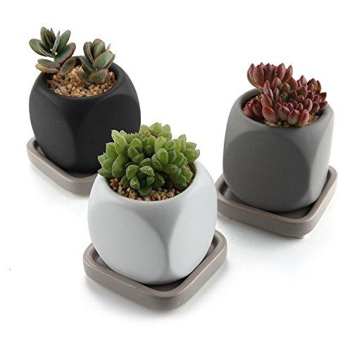 T4u 6.3cm ceramica moderno dado design succulento vaso / cactus vasi di fiori contenitore porta porcellana piante con vassoio quadrato - colore pieno confezione da 3