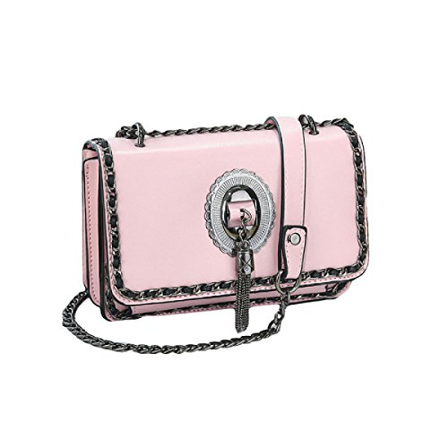 Signora Messenger Catena Di Borsa Del Pacchetto Di Moda Del Sacchetto Di Mini Tracolla Semplice Selvaggio Pink