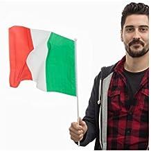 Bandiera dell'Italia con Asta (46 x 30 cm)