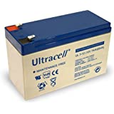 Wentronic Batterie au plomb Ultracell 12 V 7 Ah Faston 187-4,8 mm (Import Allemagne)