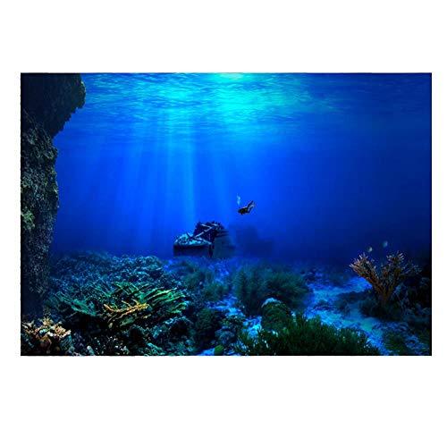 Acuario Fondo HD Submarino Coral Reef Fotos Papel