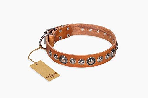 collier-pour-chien-en-cuir-marron-clair-avec-vieil-argent-comme-decorations-splendid-protegera-fabri