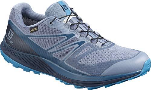 Salomon Herren Trailrunning-Schuhe, SENSE ESCAPE 2 GTX, Farbe: grau/blau (Flint Stone/Navy Blazer/Fjord Blue), Größe: 42