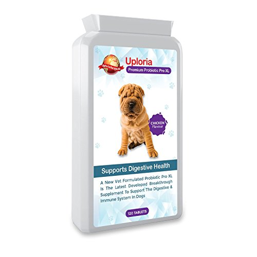 Uploria Pet World Suplemento Probiótico para Estómagos Sensibles De Perros | 120...