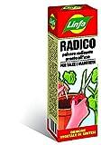 RADICANTE POLVERE PRONTO uso 50 gr x talee erbacee e legnose orto RADICO
