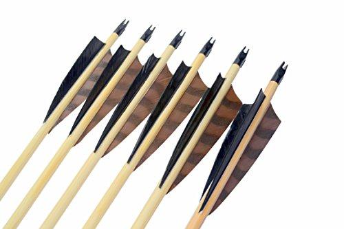 "Arrowforge - 12 Stück Holzpfeile Pfeile 4"" Shield Barred Braun Leitfeder"