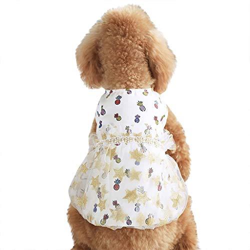 MMOOVV 1 PCS Pet Ananas Kleidung Sommer Damen Lace Fairy Temperament Hund Rock Prinzessin Kostüm (Weiß XS) (Prinzessin Einhorn Kostüm Hund)