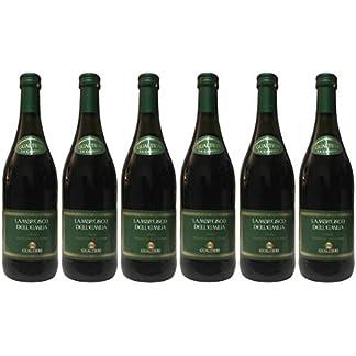 Lambrusco-rosso-dolce-Gualtieri-DellEmilia-IGT-6-X-075-L-Vino-Frizzante-Roter-Ser-Perlwein-75-Vol-aus-Italien