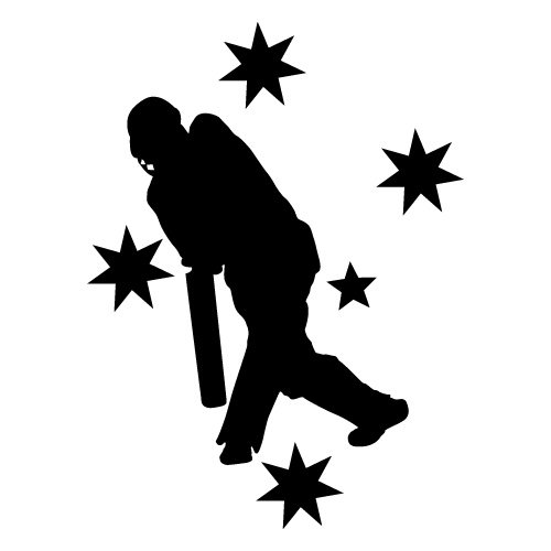 AUSTRALIA CRICKET SOUTHERN CROSS VAN Sticker Decal Surfboard Vintage Skate Surf