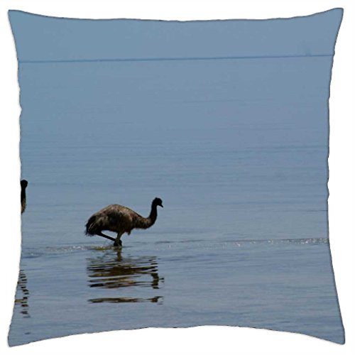 Aussie Emu;s Cooling Off - Throw Pillow Cover Case (18\