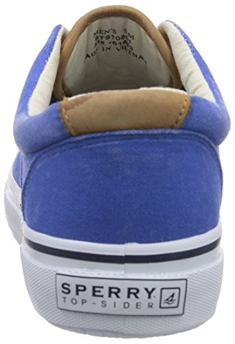 Sperry Top-Sider Striper Cvo, Sneakers basses homme Bleu - Bleu