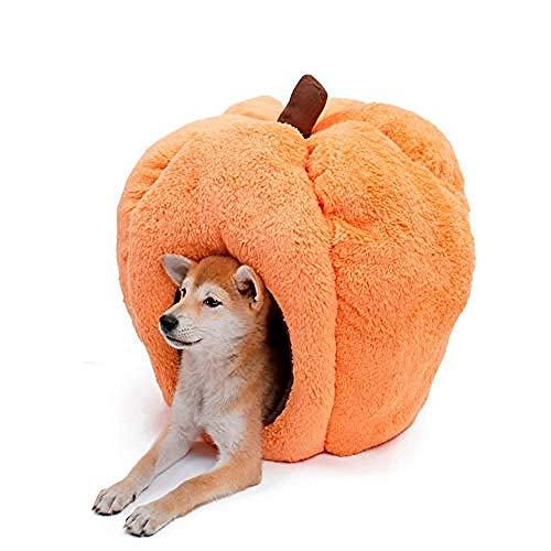 yhwygg Hundebettnew Halloween Haustierbett Haus Orange Hundebett Tier Höhlennest Hündchen Zwinger Cute Pet Cat Dog (Cute Halloween Cat)
