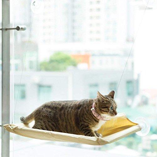 iHOY Katze Hängematte Bett Katze Hängematte Katzen Sich Fenster Hängematte Sitzstange Kissen Bett Hängesessel Bequem Hanging Haustier für Kleine Hunde Kaninchen Andere Kleintiere (Beige) (Stellen Sie Stuhl-kissen-abdeckung)