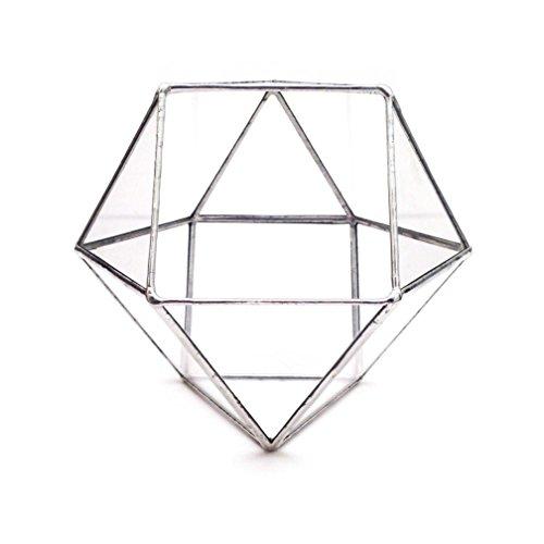 oktaeder-kleine-geometrische-glas-terrarium-handarbeit-glas-ubertopf-modernes-pflanzgefass-fur-den-g