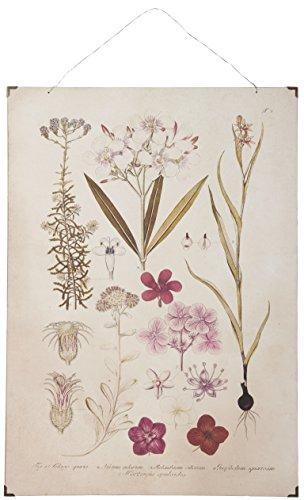 IB Laursen–Cuadro de Estilo Vintage, nostálgica Imagen, Papel Sobre Madera impresión Color Rosa Flores