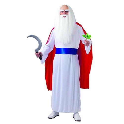 Druide aus Gallien - Kostüm für Herren Gr. M/L, Größe:L (Druide Kostüm)