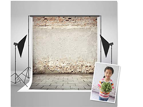 WaW Rosa Rustikal Studio Hintergründe 3x3m Fotohintergrund Shabbychic Ziegel Mauer Fotografie Stoffhintergrund Fotostudio Portrait Vintage...