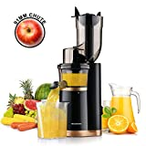 Best Masticating Juicers - Masticating Juicer Slow Juicer, Slow Juicer Extractor Review