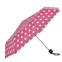 Drizzles Women Folding Umbrella