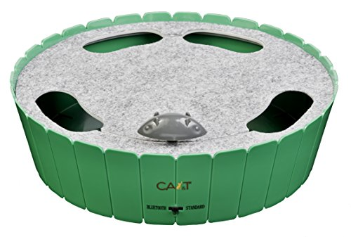 CA&T Bluetooth Dancing to Music Burrow Mouse 1