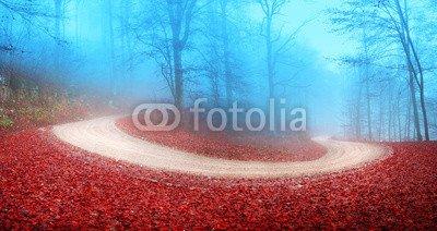 """Poster-Bild 110 x 60 cm: """"Foggy autumn forest road"""", Bild auf Poster"""