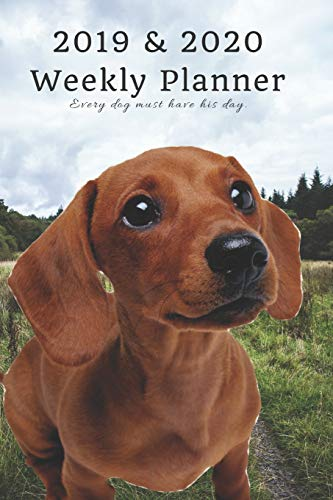 2019 & 2020 Weekly Planner Every dog must have his day.: Cute Dachshund Sausage in Nature: Two Year Agenda Datebook: Plan Goals to Gain & Work to Maintain Daily & Monthly (6 x 9 in; 105 pages) -