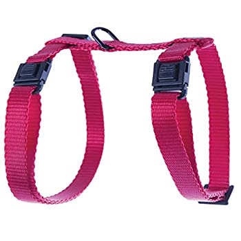 Martin Sellier Harnais Chat ou Petit Chien en Nylon Haute qualité réglable 35 à 50cm (Rouge)