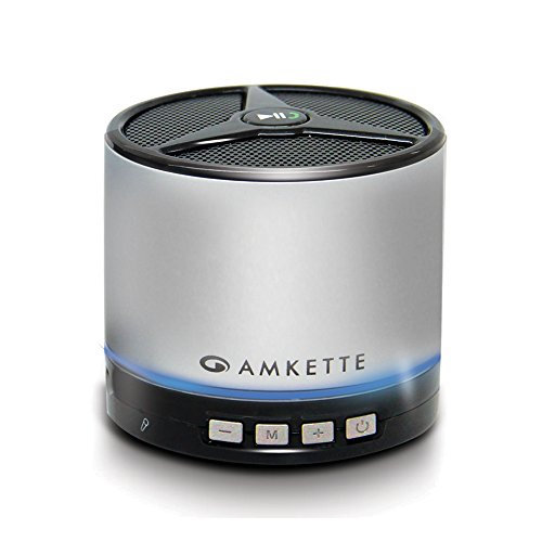 Amkette FDD663SL Trubeats Metal 2 Portable Bluetooth Speaker With Trusound Bass and Direct Play (With Premium Carry Case ,Micro SD card Support/ Aux / Bluetooth/ USB OTG support) (Silver)