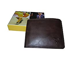 Allen Solly Men Wallet Brown New