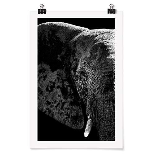 Bilderwelten Poster Galerieprint - Afrikanischer Elefant schwarz-weiß - Glänzend 45 x 30cm