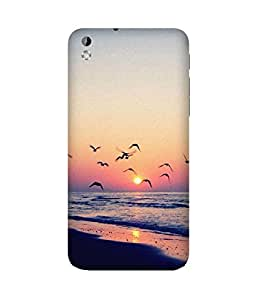 Birds And Sunset HTC Desire 816 Case
