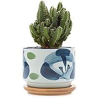 T4U 7,5 cm, ceramica giapponese. Seriale Sucuulent-Vaso per piante, con vaso per fiori, a forma di Cactus, Contenitore per alimenti, colore: nero