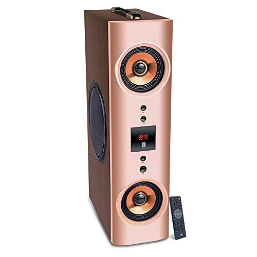 iBall Karaoke Booster Tower (Brown)