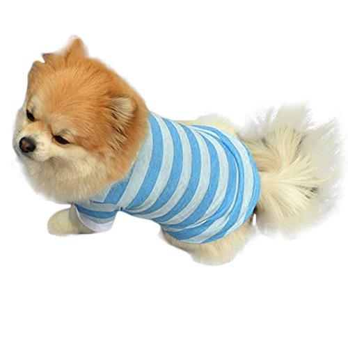 BBsmile Suéter Perro Ropa Perro pequeño Invierno Perro Mono Ropa de la Camiseta Raya de la Solapa Cachorro de algodón Mascota Ropa para Perros Ropa Perrito Cachorro