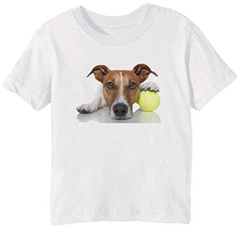 Jack Russell Terrier Hund Rasse Kinder Unisex Jungen Mädchen T-Shirt Rundhals Weiß Kurzarm Größe XL Kids Boys Girls White X-Large Size XL (T-shirt Zitat Hund)
