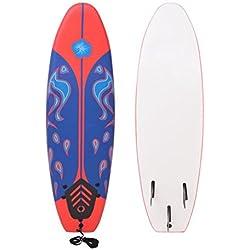 vidaXL Planche de Surf pour Débutants Adultes et Enfants Bleu et Rouge 170 cm