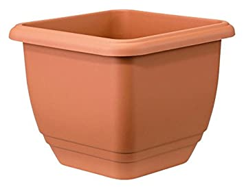 Stewart Balconniere Square Planter 40 Cm Terracotta Amazon Co Uk